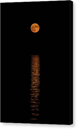 Canvas Print featuring the photograph Harvest Moonrise by Paul Freidlund