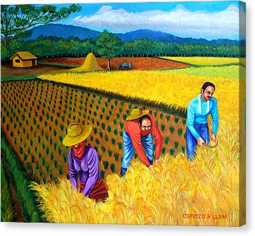 Pinoy Canvas Print - Harvest Season by Cyril Maza