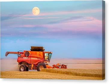 Harvest Supermoon Canvas Print