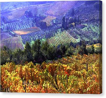 Harvest Time At The Vineyard Canvas Print by Elaine Plesser