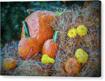 Harvest Time Canvas Print by Ches Black