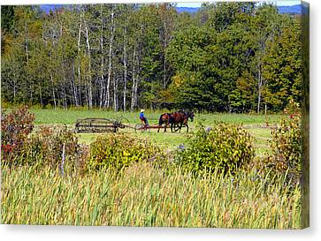Harvest Time Canvas Print by David Lee Thompson