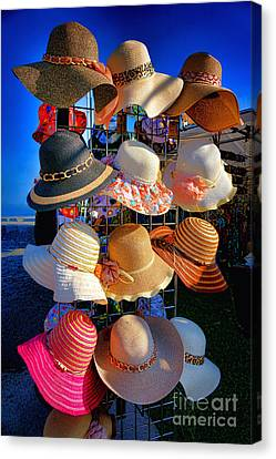 Hat Rack Canvas Print by Olivier Le Queinec