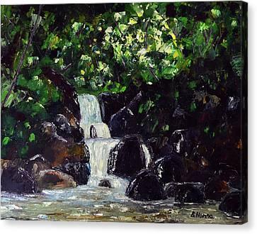 Hatcher Pass Creek Canvas Print