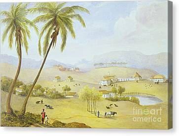 Haughton Court - Hanover Jamaica Canvas Print by James Hakewill