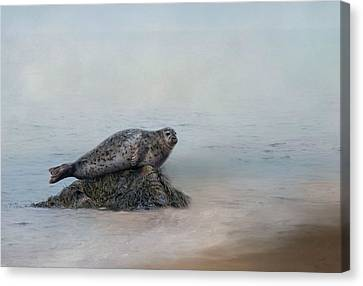 Canvas Print featuring the photograph Hauling Out by Robin-Lee Vieira