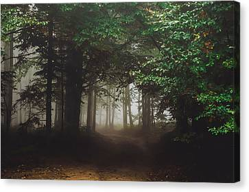 Haunted Forest #2 Canvas Print