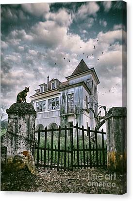 Creepy Canvas Print - Haunted House And A Cat by Carlos Caetano