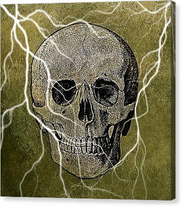 Haunted Skull Canvas Print by Brandi Fitzgerald