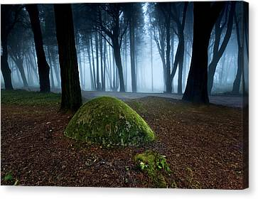 Canvas Print featuring the photograph Haunting by Jorge Maia