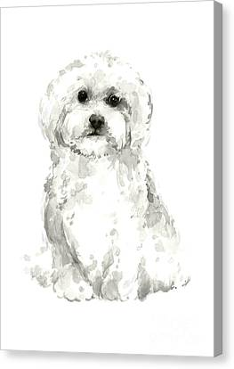 Maltese, Havanese Custom Dog Illustration, White Dog Art Print, Maltese Watercolor Painting Canvas Print by Joanna Szmerdt