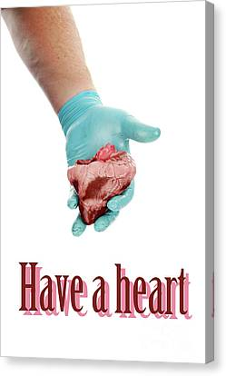 Have A Heart Canvas Print by Michael Ledray