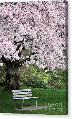 Canvas Print featuring the photograph Have A Seat by Victor K