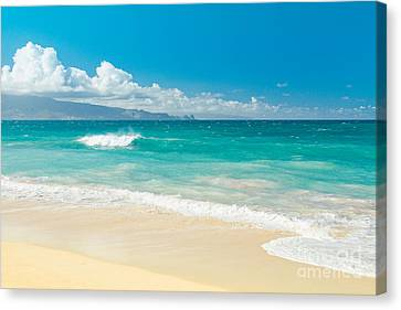 Canvas Print featuring the photograph Hawaii Beach Treasures by Sharon Mau