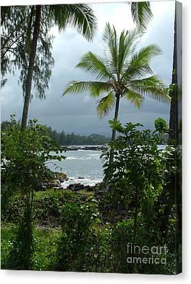 Hawaii Canvas Print by Garnett  Jaeger