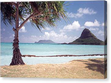 Canvas Print featuring the photograph Hawaii Heaven by Lori Mellen-Pagliaro