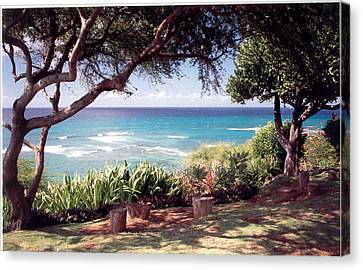 Canvas Print featuring the photograph Hawaii by Lori Mellen-Pagliaro