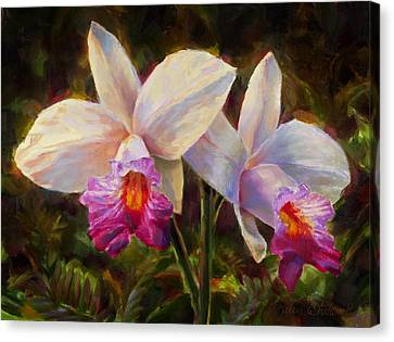 Hawaiian Bamboo Orchid Canvas Print by Karen Whitworth