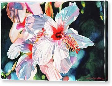 Canvas Print - Hawaiian Hibiscus by David Lloyd Glover