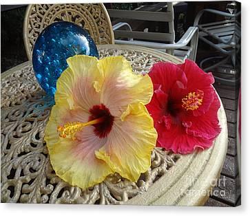Hawaiian Lovelies Canvas Print
