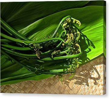 Hawaiian Pahole Fern Canvas Print by James Temple