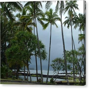Hawaiian Paradise Canvas Print by Garnett  Jaeger