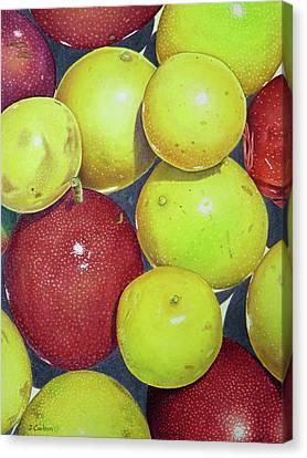 Passiflora Canvas Print - Hawaiian Passion Fruit by Joel Carlson