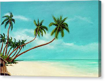 Hawaiian Prime Real Estate  #284 Canvas Print by Donald k Hall