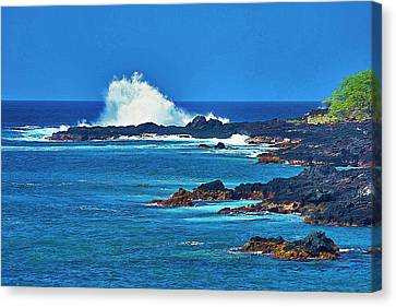 Hawaiian Seascape Canvas Print