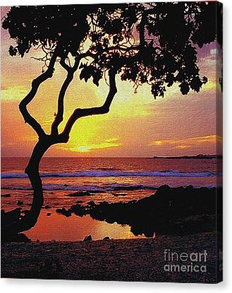 Hawaiian Sunset Canvas Print by D Nigon