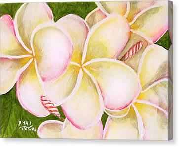 Hawaiian Tropical Plumeria Flower #483 Canvas Print by Donald k Hall