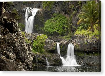 Hawaiian Waterfall Canvas Print by Don Wolf