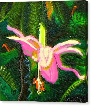 Hawaiian Wildflower Canvas Print by Angela Annas