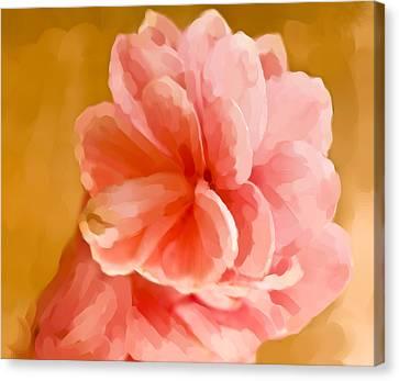 Hawian Ginger Flower Canvas Print by Daniel D Miller