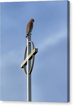 Hawk On Steeple Canvas Print by Richard Rizzo