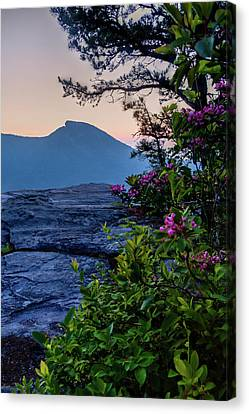 Hawksbill Mountain Canvas Print