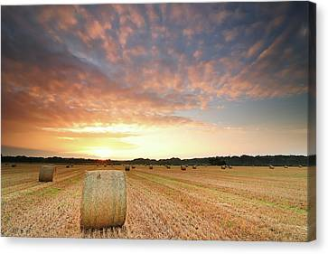 Bales Canvas Print - Hay Bale Field At Sunrise by Stu Meech