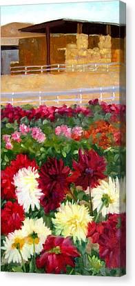 Hay Bales And Dahlias Canvas Print by Deborah Cushman