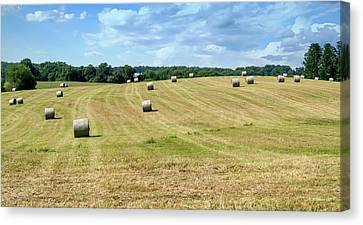 Hay Bales In A Field Canvas Print by Brian Wallace