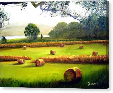 Hay Bales Canvas Print by Julie Lamons