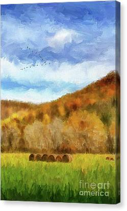 Hay Bales Canvas Print by Lois Bryan