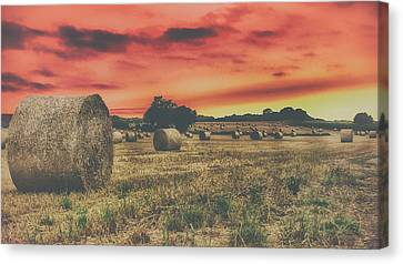 Haybales Canvas Print - Hay Bales Sunset by Martin Newman