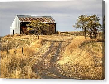 Hay Barn Near Gifford Idaho Canvas Print by Brad Stinson