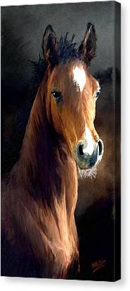 Canvas Print featuring the painting Hay Dude by James Shepherd