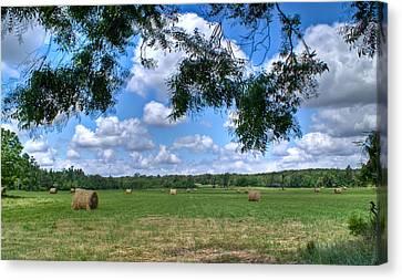 Hay Field In Summertime Canvas Print by Douglas Barnett