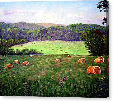 Hay Field Canvas Print by Stan Hamilton