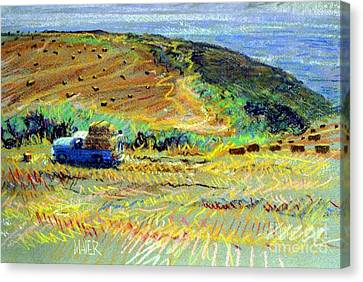Hay Harvest On The Coast Canvas Print by Donald Maier