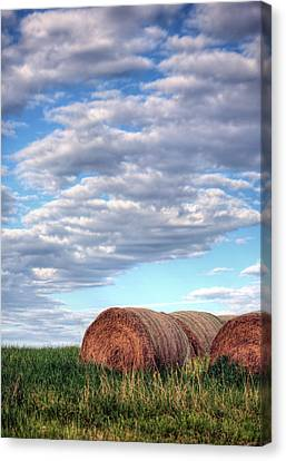 Hay It's Art Canvas Print by JC Findley