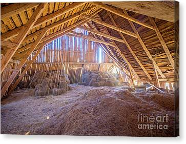 Hay Loft Canvas Print by Inge Johnsson