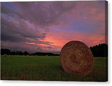 Bales Canvas Print - Hay Now by Jerry LoFaro